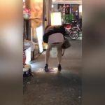 【個人撮影】歌舞伎町の路上で豪快に立ちションする女性を見かけたのでスマホで撮影!